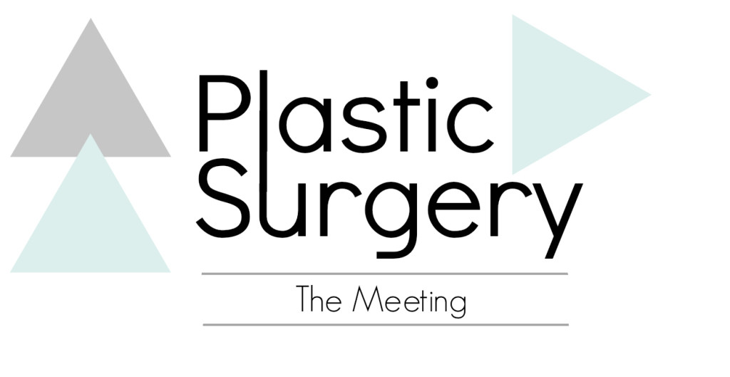 Vecchione Plastic Surgery The Meeting.jpg