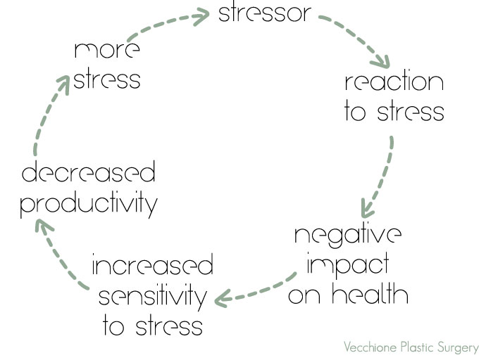 Vecchione-Plastic-Surgery-Holiday-Stress-Cycle